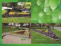 Rabaty kwiatowe - place iskwery